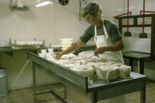 Trudie at the cheese dairy